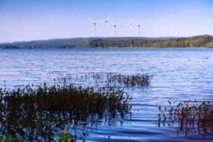 Pond Wind