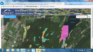 Wetlands Inventory Map
